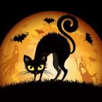 Top Ways To Celebrate Halloween 2014