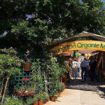 The Bryanston Organic & Natural Market Reopens On ...