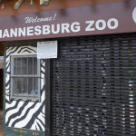 Holiday Excitement At Joburg Zoo