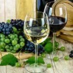 Groves & Vineyards Summer Festival