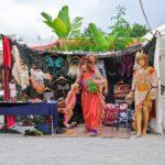 Vegan Hippie Connection Market