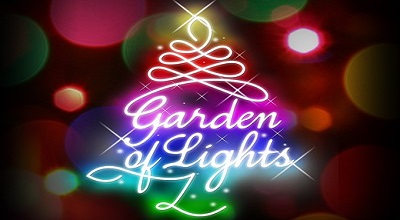 Don't Miss The Dazzling Garden Of Lights At Emperors Palace