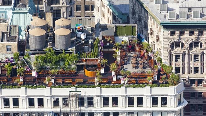 Rooftop Gardening In The Inner City Joburg