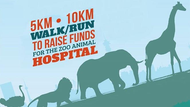 Zoo Hospital Run And Walk