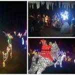 Lighting Up Lives - The Garden of Lights at Empero...