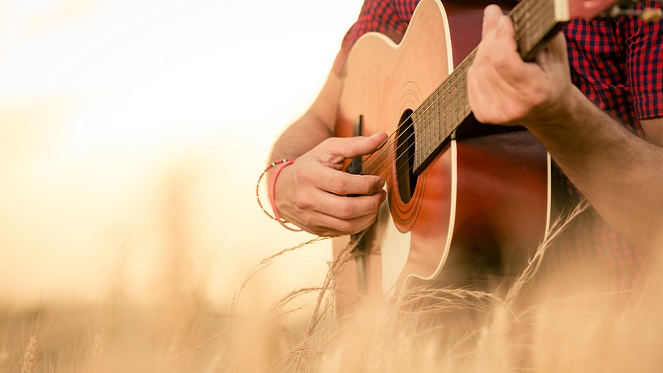 Fourways Farmers Country Music Market