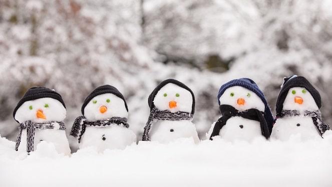 Snowy Activities
