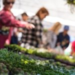 Spring Plant Sale At Garden Of St. Christopher