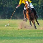 Nedbank International Polo 2019