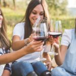 Country And Wine Festival At Marechelle Country Estate