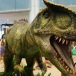 The Dino Expo Pretoria National Botanical Garden