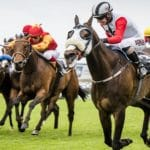 Don't Miss Joburg's Classic Day at Turffontein Raceco...