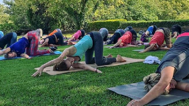 Slow Art And Yoga At Nirox Sculpture Park