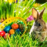 POSTPONED: The Sylvia's Easter Market And Easter Egg Hu...