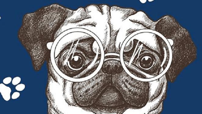 Sandton SPCA Pub Quiz