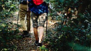 free hiking trails in Joburg