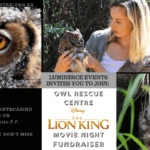Owl Rescue Centre - Lion King Movie Night Fundraiser