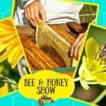 Bee & Honey Show At Hecker Nursery