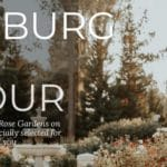 Joburg Rose Garden Tour
