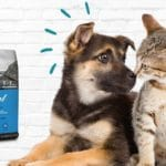 ZUKI: Your New One-Stop Online Pet Store