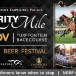 Don't Miss The Joburg Beer Festival At The Peermont Emp...