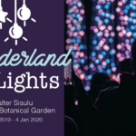 Wonderland Of Lights