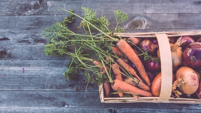 Earthy Vegan Market