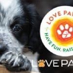 POSTPONED: Don't Miss The 4th Annual Love Paws Concert!