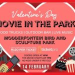 Valentine's Day Movie At The Park!