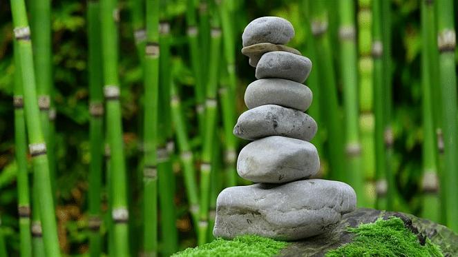 High Vibe Yoga & Vegetarian Cooking Retreat