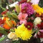 Auckland Park Florist
