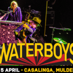 CANCELLED: Don't Miss The Waterboys LIVE At Casalinga!