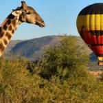 Vaya Africa Travels