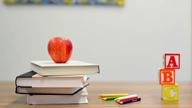 schools in Edenvale