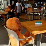 The Social Distancing Teddy Bears Of Piza E Vino