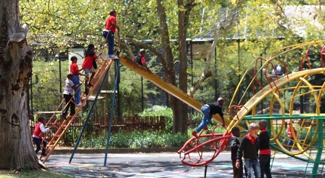 playground at zoo
